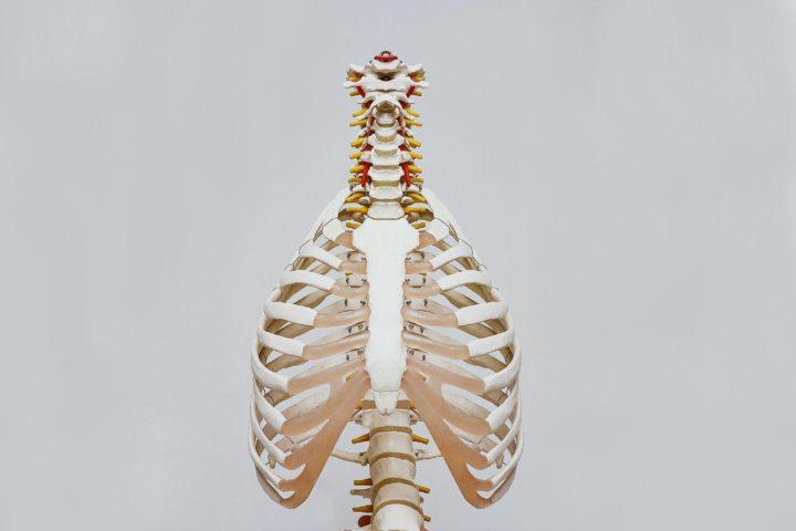 Hva betyr det egentlig å puste med magen?
